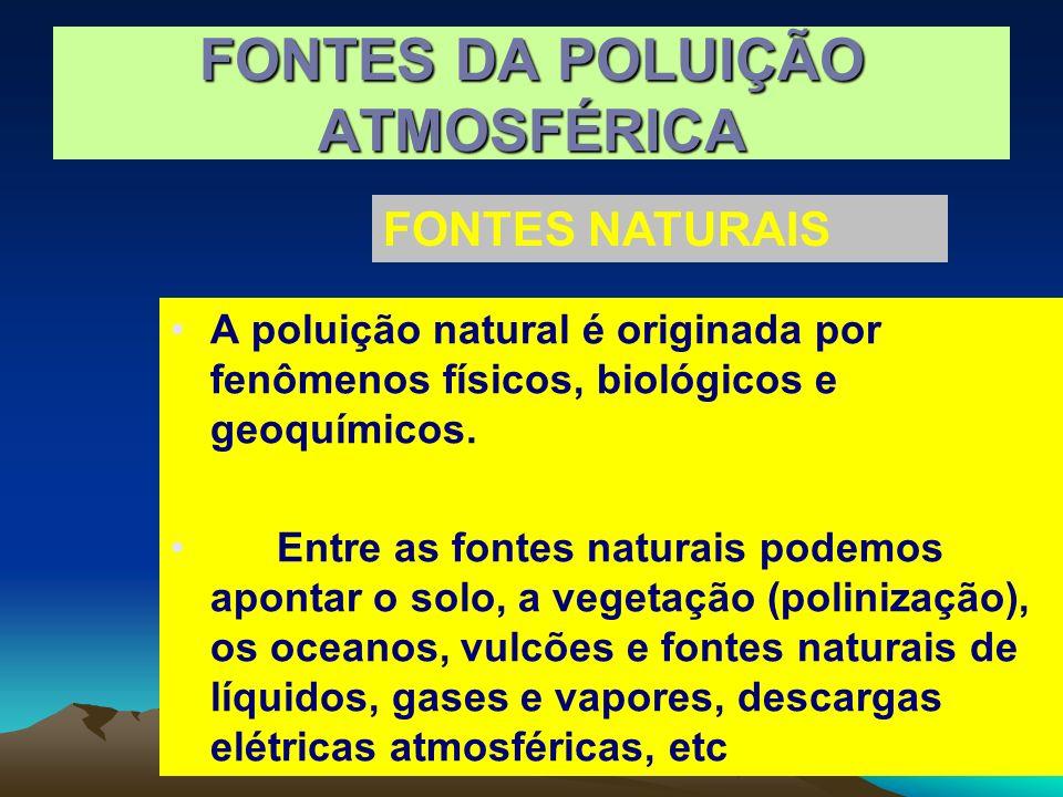A poluição natural é originada por fenômenos físicos, biológicos e geoquímicos. Entre as fontes naturais podemos apontar o solo, a vegetação (poliniza