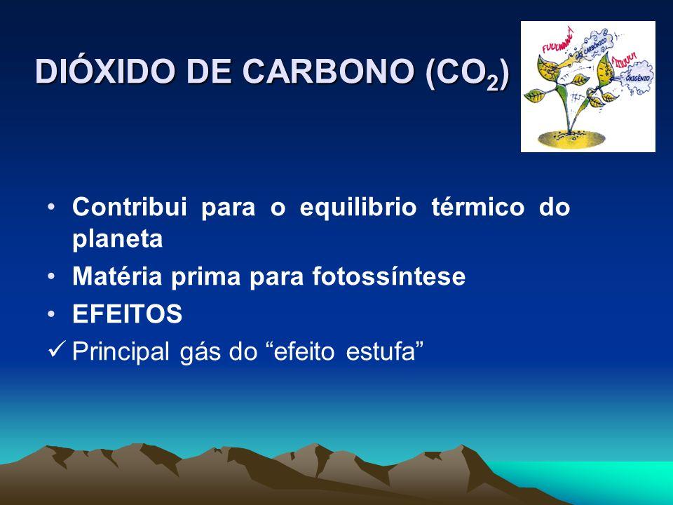 DIÓXIDO DE CARBONO (CO 2 ) Contribui para o equilibrio térmico do planeta Matéria prima para fotossíntese EFEITOS Principal gás do efeito estufa