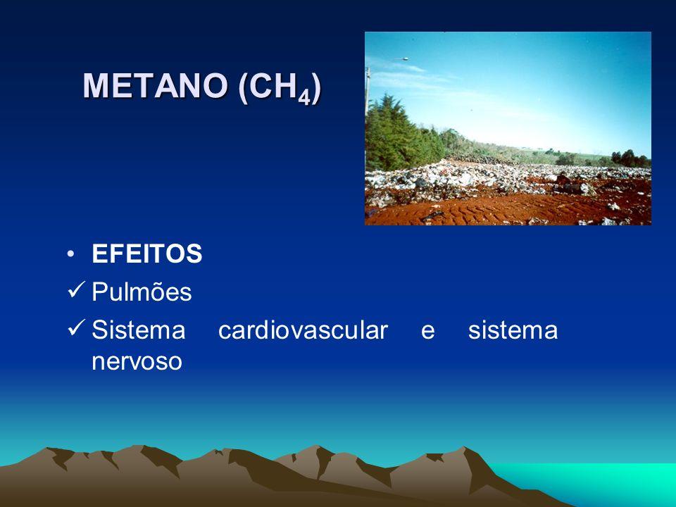 EFEITOS Pulmões Sistema cardiovascular e sistema nervoso METANO (CH 4 )