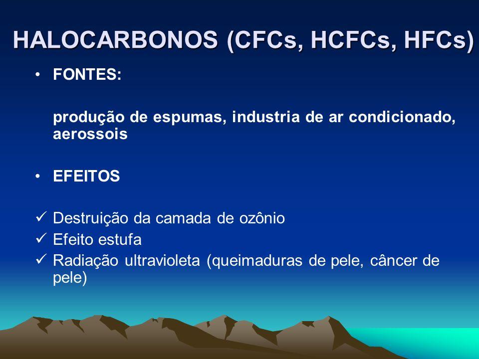 FONTES: produção de espumas, industria de ar condicionado, aerossois EFEITOS Destruição da camada de ozônio Efeito estufa Radiação ultravioleta (queim