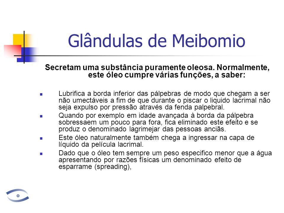 Glândulas de Meibomio Secretam uma substância puramente oleosa. Normalmente, este óleo cumpre várias funções, a saber: Lubrifica a borda inferior das