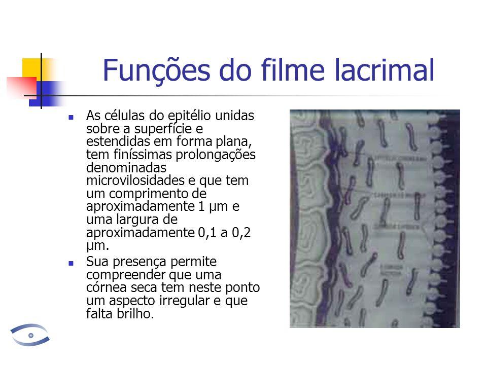 Funções do filme lacrimal As células do epitélio unidas sobre a superfície e estendidas em forma plana, tem finíssimas prolongações denominadas microvilosidades e que tem um comprimento de aproximadamente 1 µm e uma largura de aproximadamente 0,1 a 0,2 µm.