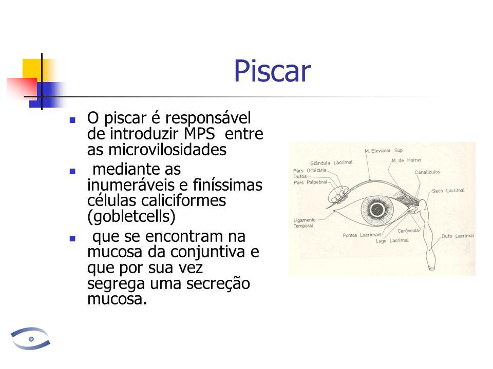 Piscar O piscar é responsável de introduzir MPS entre as microvilosidades mediante as inumeráveis e finíssimas células caliciformes (gobletcells) que