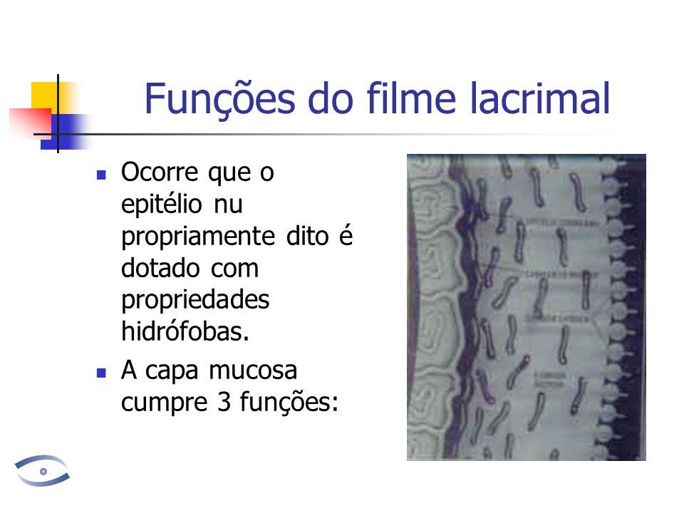Funções do filme lacrimal Ocorre que o epitélio nu propriamente dito é dotado com propriedades hidrófobas. A capa mucosa cumpre 3 funções: