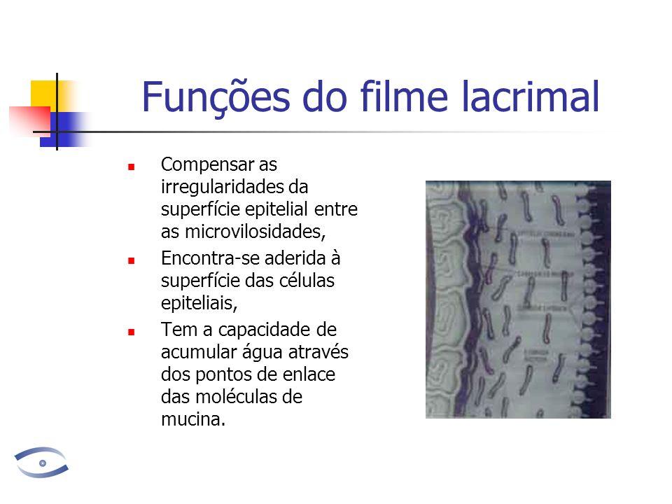 Funções do filme lacrimal Compensar as irregularidades da superfície epitelial entre as microvilosidades, Encontra-se aderida à superfície das células