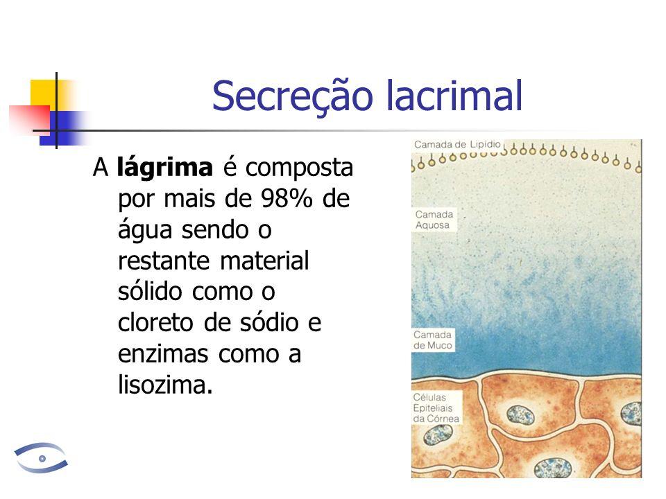 Secreção lacrimal A lágrima é composta por mais de 98% de água sendo o restante material sólido como o cloreto de sódio e enzimas como a lisozima.