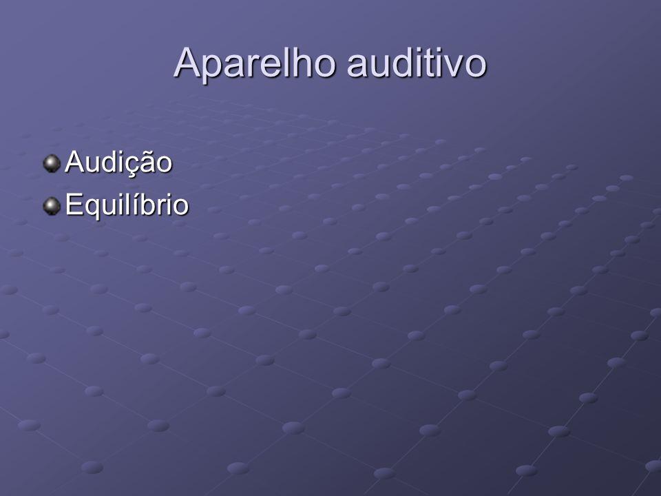 Aparelho auditivo AudiçãoEquilíbrio