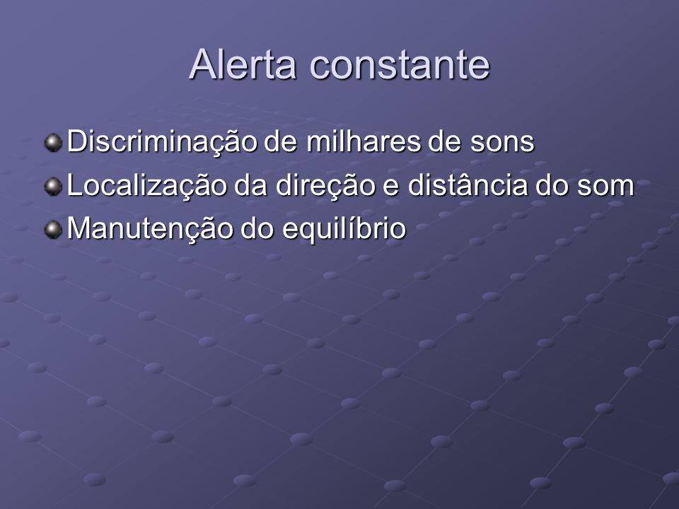 Alerta constante Discriminação de milhares de sons Localização da direção e distância do som Manutenção do equilíbrio