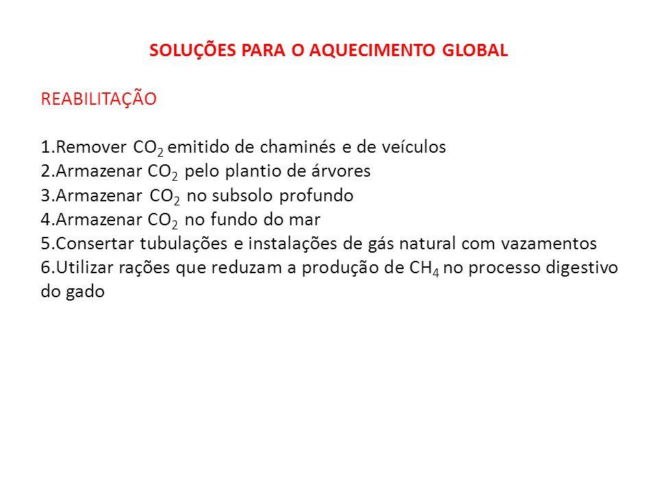 SOLUÇÕES PARA O AQUECIMENTO GLOBAL REABILITAÇÃO 1.Remover CO 2 emitido de chaminés e de veículos 2.Armazenar CO 2 pelo plantio de árvores 3.Armazenar