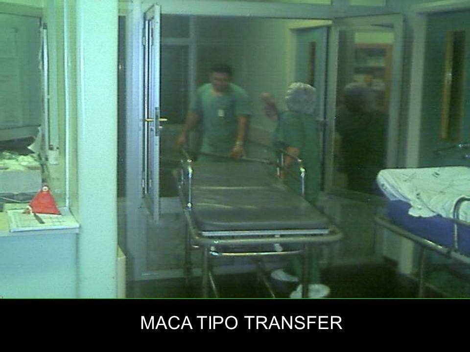 MACA TIPO TRANSFER