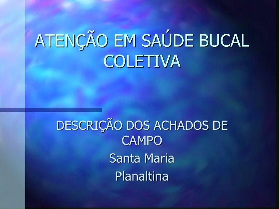 ATENÇÃO EM SAÚDE BUCAL COLETIVA DESCRIÇÃO DOS ACHADOS DE CAMPO Santa Maria Planaltina