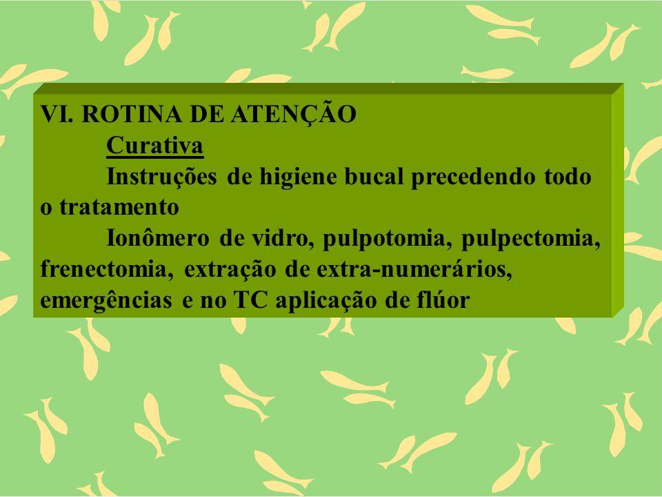 VI. ROTINA DE ATENÇÃO Curativa Instruções de higiene bucal precedendo todo o tratamento Ionômero de vidro, pulpotomia, pulpectomia, frenectomia, extra