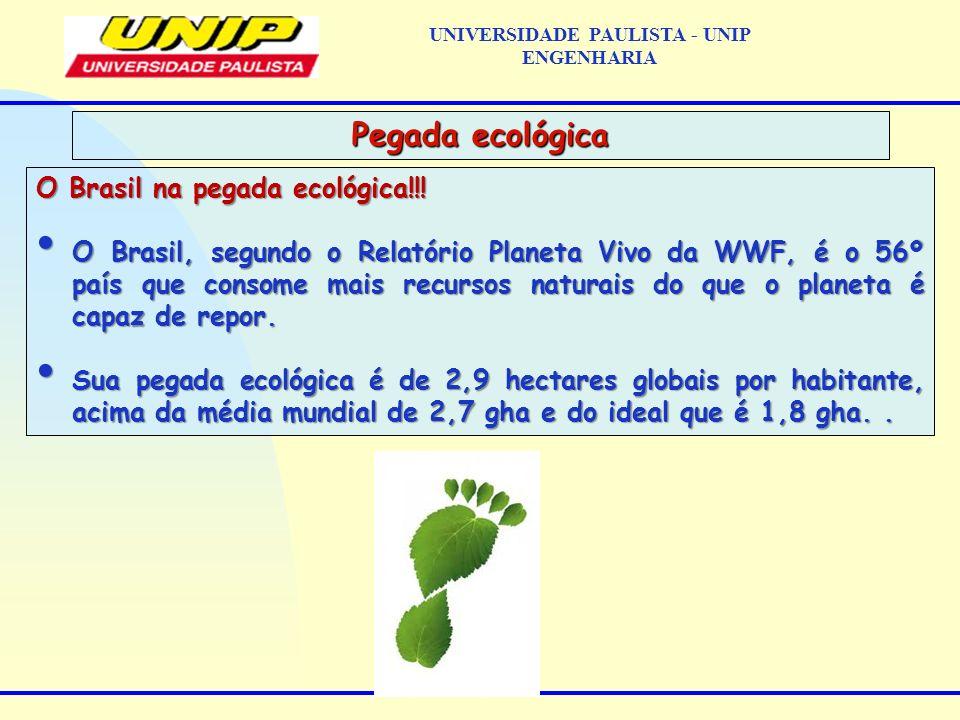 O Brasil na pegada ecológica!!! O Brasil, segundo o Relatório Planeta Vivo da WWF, é o 56º país que consome mais recursos naturais do que o planeta é
