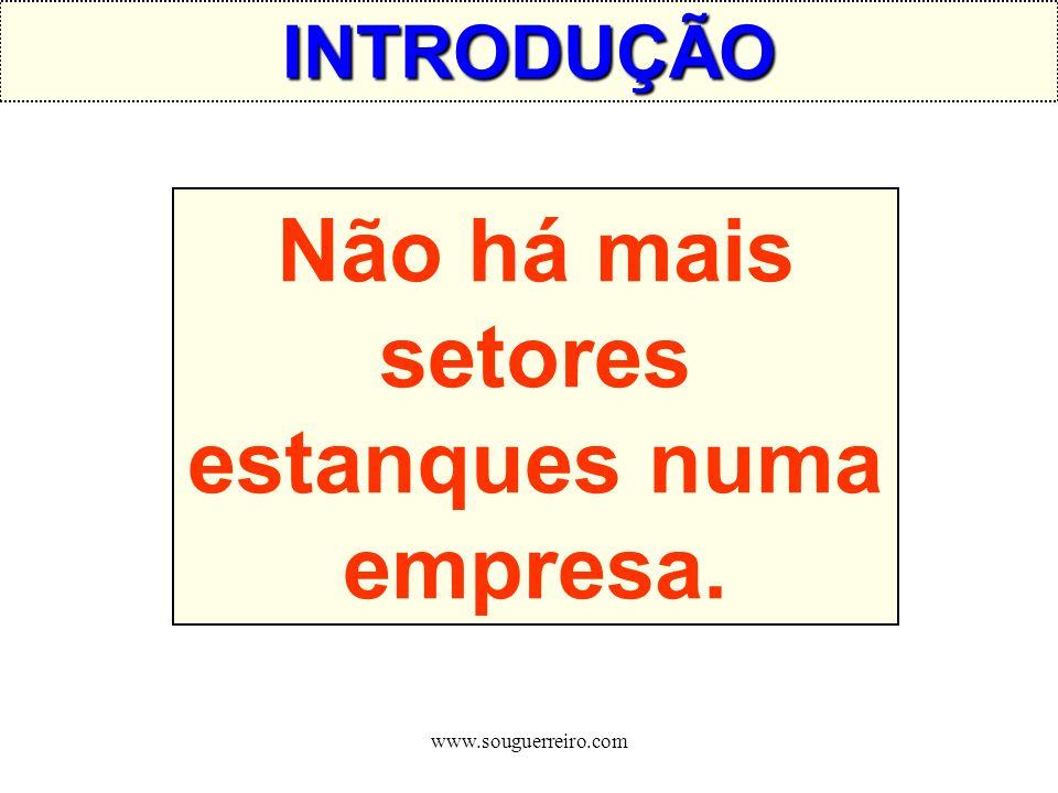 www.souguerreiro.com Não há mais setores estanques numa empresa. INTRODUÇÃO