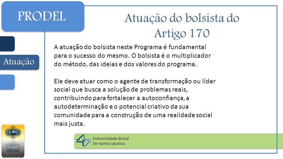 Atuação do bolsista do Artigo 170 A atuação do bolsista neste Programa é fundamental para o sucesso do mesmo. O bolsista é o multiplicador do método,