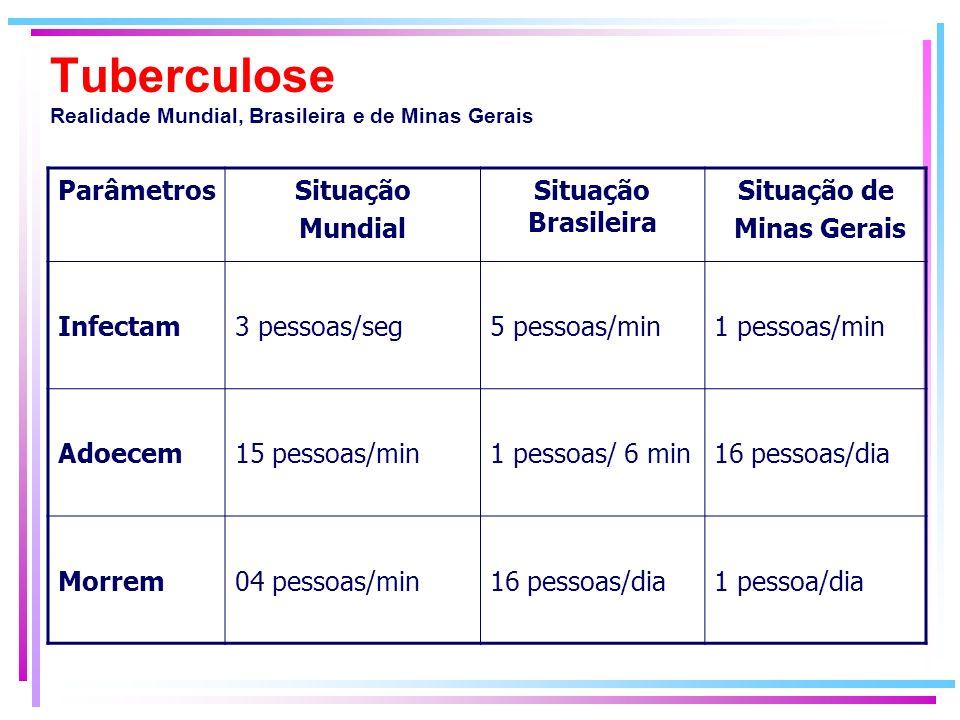Tuberculose Realidade Mundial, Brasileira e de Minas Gerais ParâmetrosSituação Mundial Situação Brasileira Situação de Minas Gerais Infectam3 pessoas/