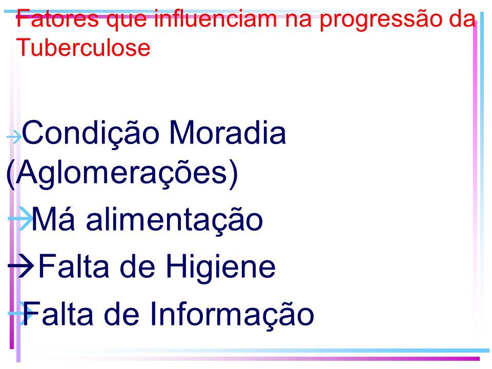 Fatores que influenciam na progressão da Tuberculose Condição Moradia (Aglomerações) Má alimentação Falta de Higiene Falta de Informação