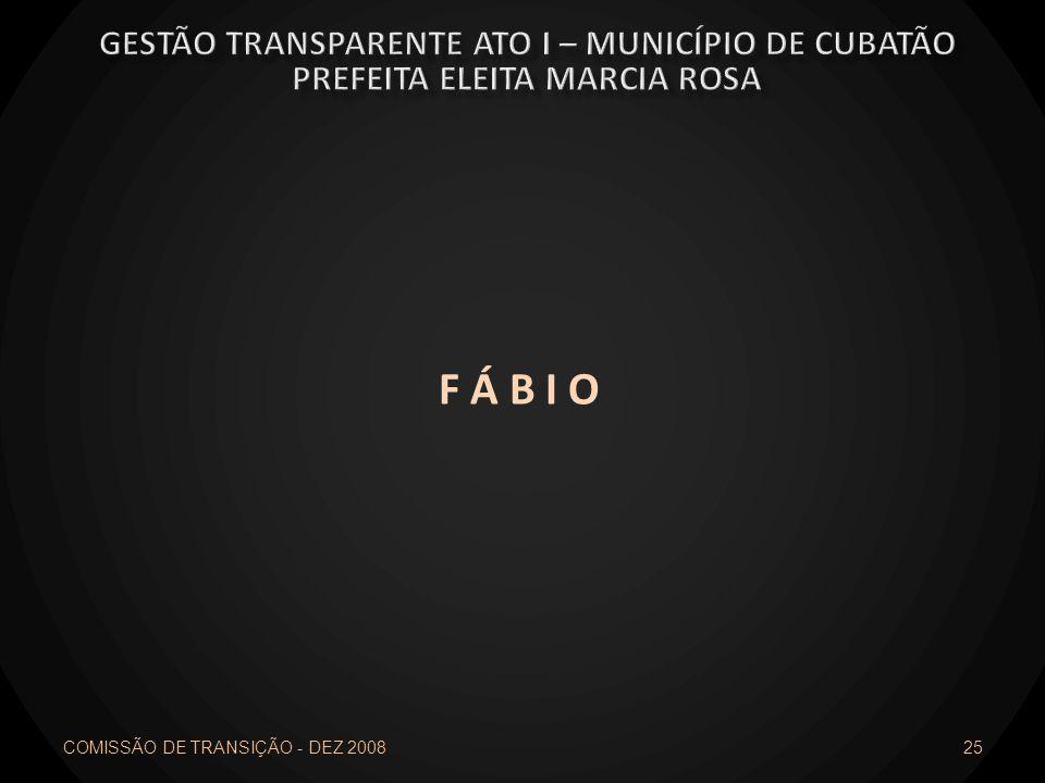 F Á B I O COMISSÃO DE TRANSIÇÃO - DEZ 2008 25