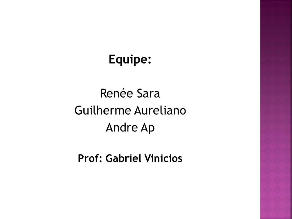 Equipe: Renée Sara Guilherme Aureliano Andre Ap Prof: Gabriel Vinicios