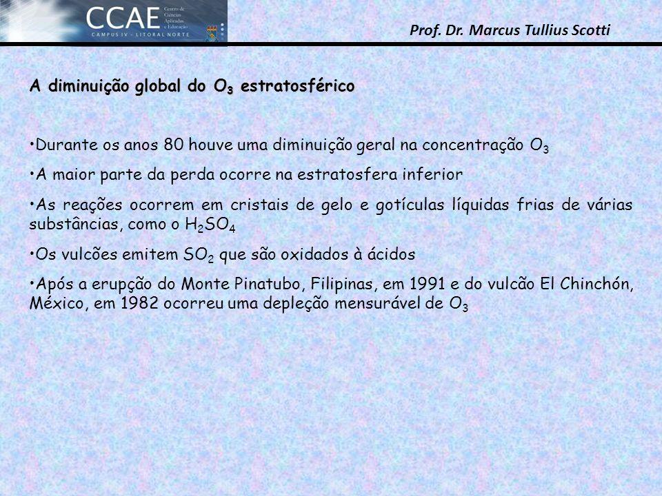 Prof. Dr. Marcus Tullius Scotti A diminuição global do O 3 estratosférico Durante os anos 80 houve uma diminuição geral na concentração O 3 A maior pa