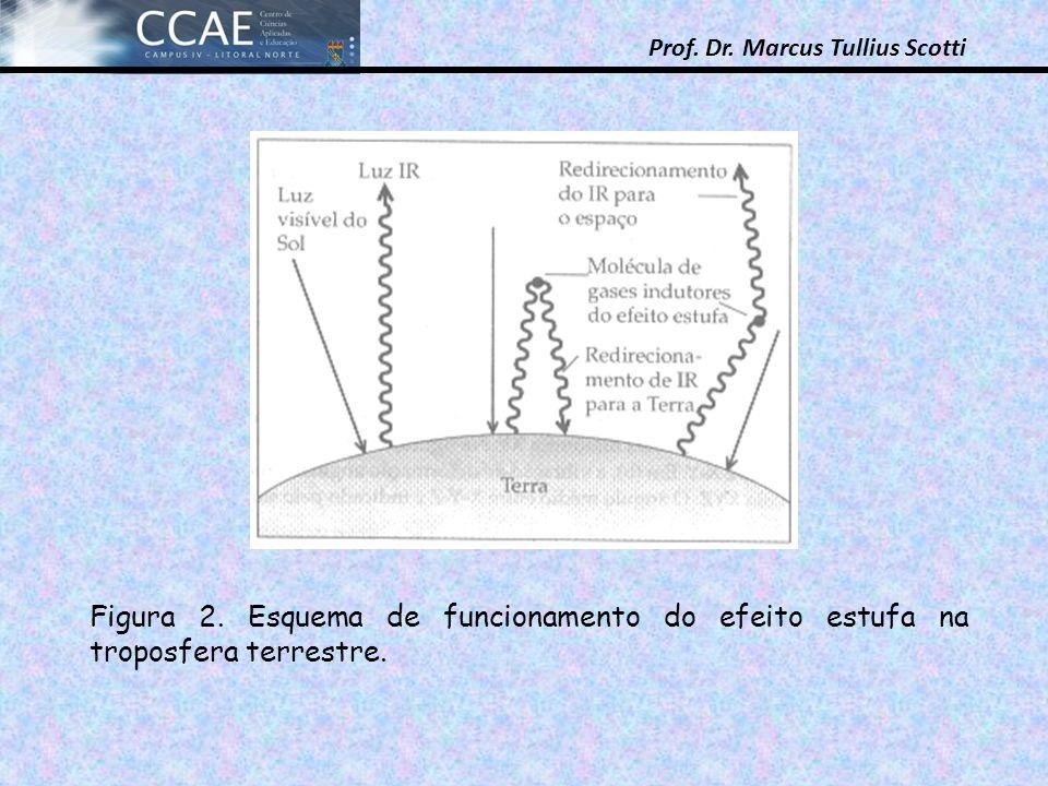 Prof.Dr. Marcus Tullius Scotti Figura 2.