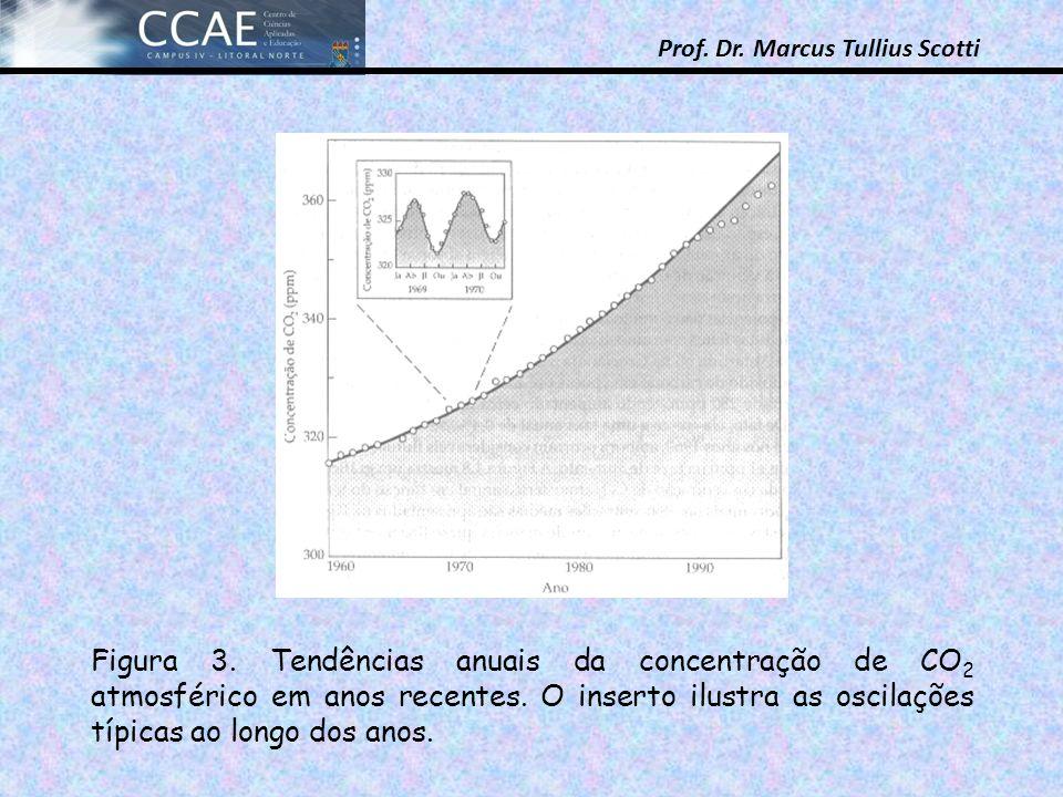 Prof. Dr. Marcus Tullius Scotti Figura 3. Tendências anuais da concentração de CO 2 atmosférico em anos recentes. O inserto ilustra as oscilações típi