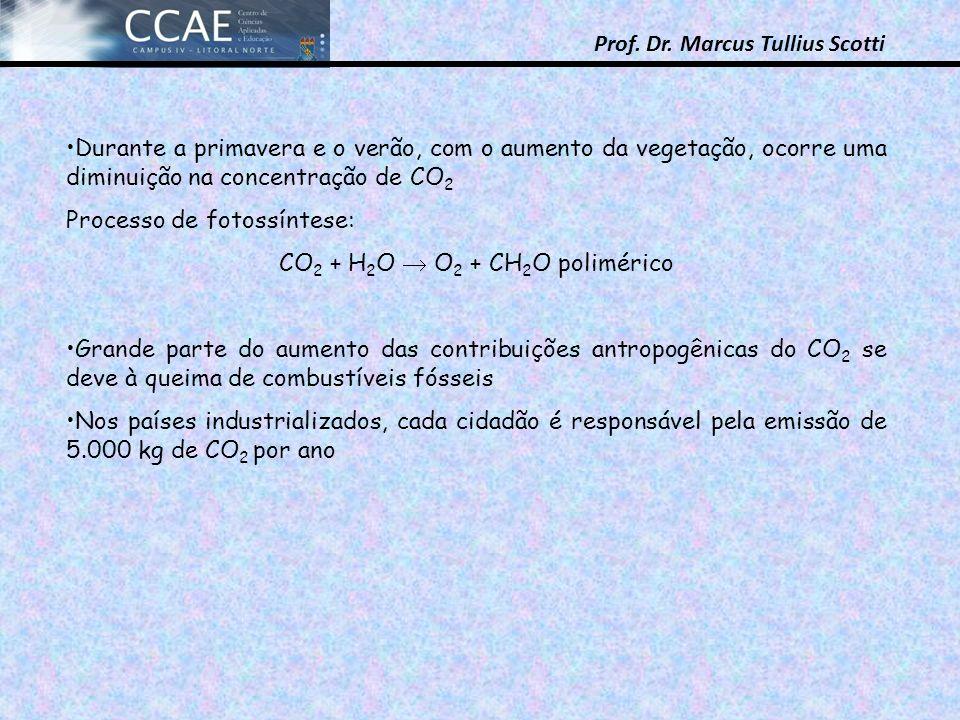 Prof. Dr. Marcus Tullius Scotti Durante a primavera e o verão, com o aumento da vegetação, ocorre uma diminuição na concentração de CO 2 Processo de f