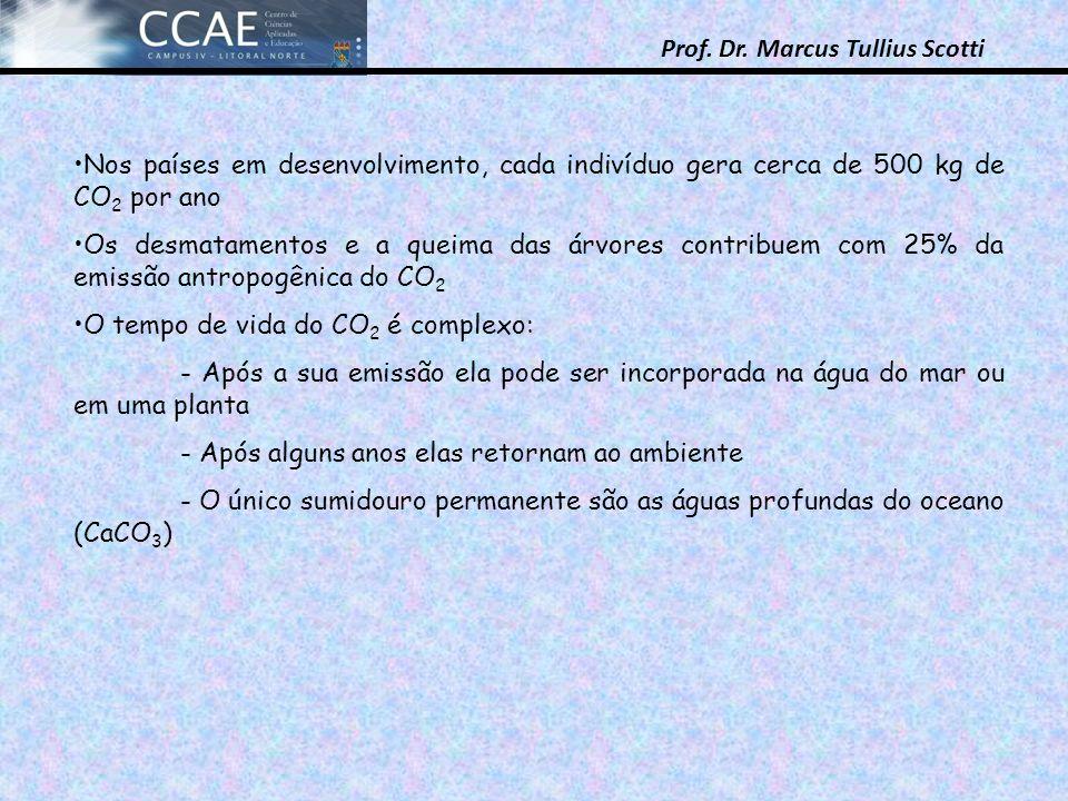 Prof. Dr. Marcus Tullius Scotti Nos países em desenvolvimento, cada indivíduo gera cerca de 500 kg de CO 2 por ano Os desmatamentos e a queima das árv