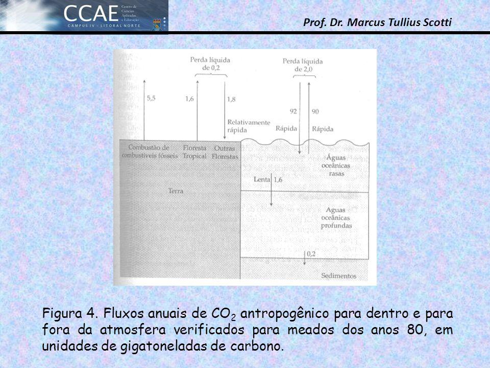 Prof. Dr. Marcus Tullius Scotti Figura 4. Fluxos anuais de CO 2 antropogênico para dentro e para fora da atmosfera verificados para meados dos anos 80