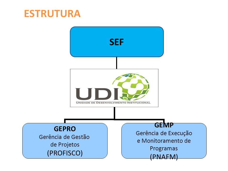 UDI Unidade de Desenvolvimento Institucional GEPRO Gerência de Gestão de Projetos (PROFISCO) GEMP Gerência de Execução e Monitoramento de Programas (PNAFM) SEF ESTRUTURA