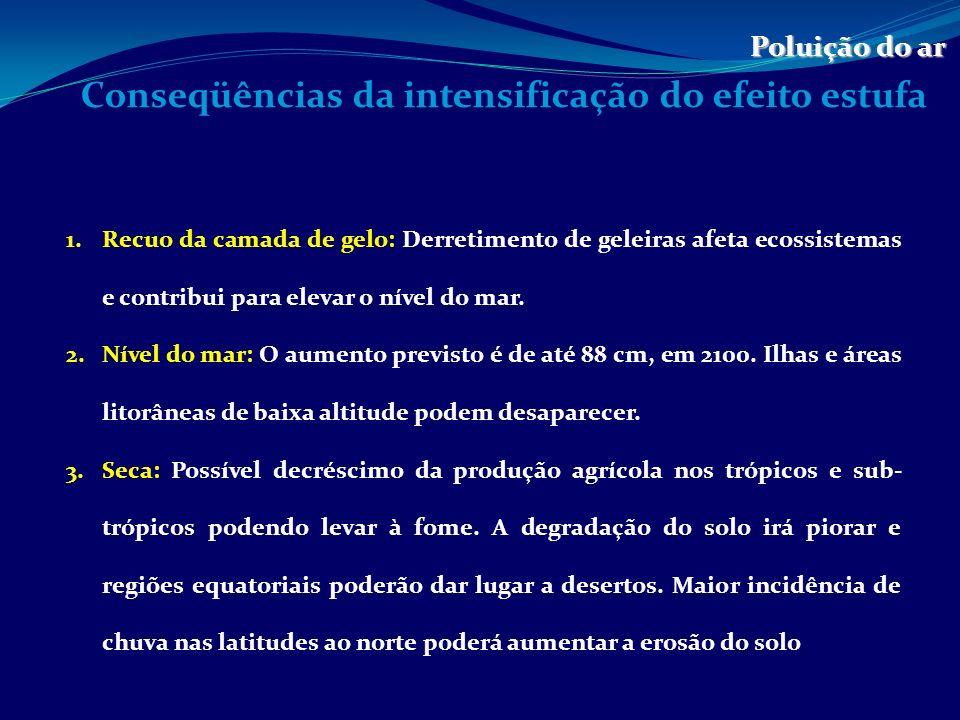 Conseqüências da intensificação do efeito estufa Poluição do ar 4.