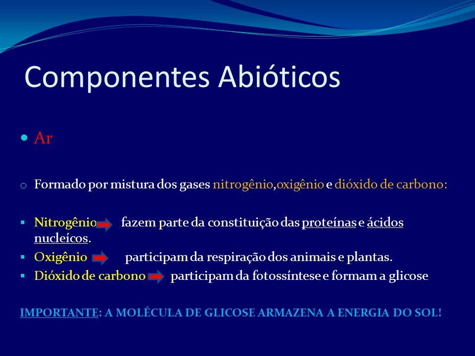 Componentes Abióticos Solo o Fonte de sais minerais que participarão do metabolismo dos seres vivos.