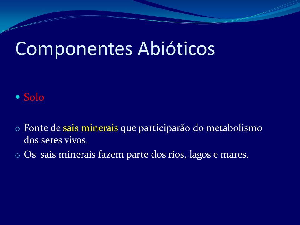 Componentes Bióticos Os componentes bióticos do ambiente constituem a comunidade Comunidade: diferentes populações ocupando um mesmo território ( ambiente).