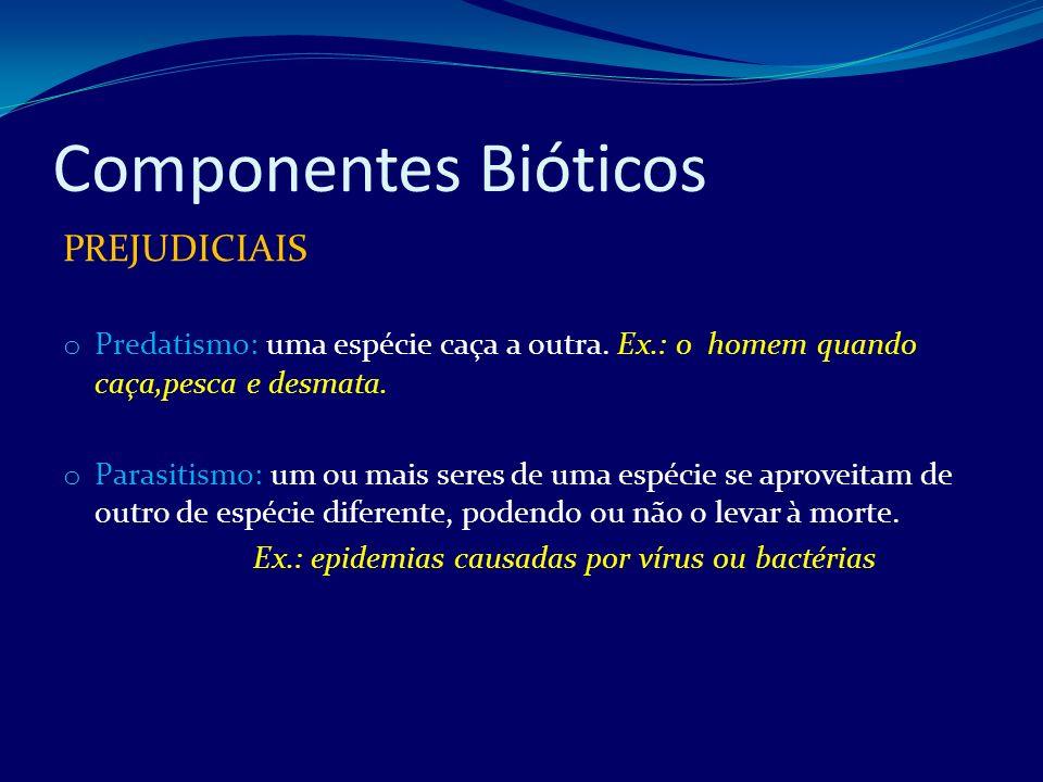 Desequilíbrio Ambiental Esgotamento dos recursos ambientais o São os recursos naturais e os organismos produzidos pela natureza.