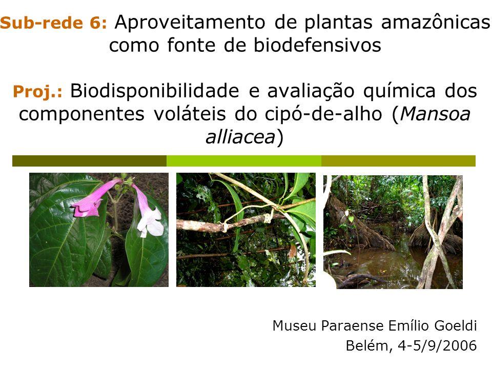 Sub-rede 6: Aproveitamento de plantas amazônicas como fonte de biodefensivos Proj.: Biodisponibilidade e avaliação química dos componentes voláteis do cipó-de-alho (Mansoa alliacea) Museu Paraense Emílio Goeldi Belém, 4-5/9/2006