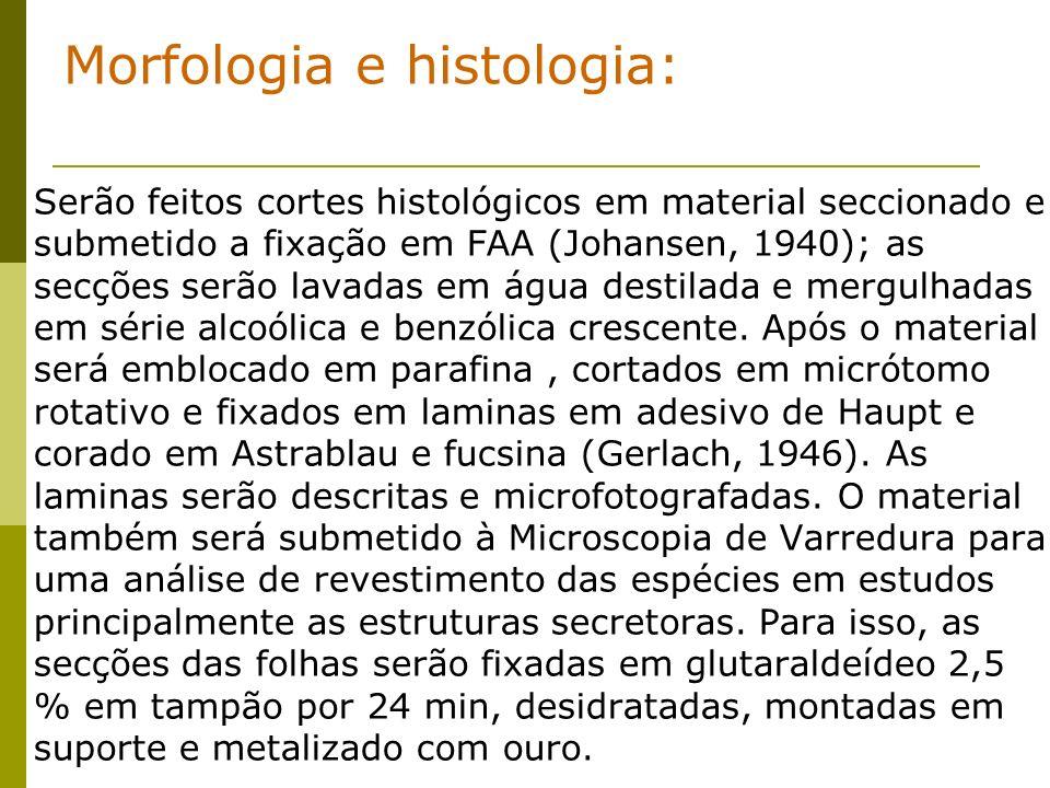 Morfologia e histologia: Serão feitos cortes histológicos em material seccionado e submetido a fixação em FAA (Johansen, 1940); as secções serão lavadas em água destilada e mergulhadas em série alcoólica e benzólica crescente.