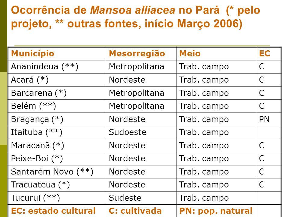 Ocorrência de Mansoa alliacea no Pará (* pelo projeto, ** outras fontes, início Março 2006) MunicípioMesorregiãoMeioEC Ananindeua (**)MetropolitanaTrab.