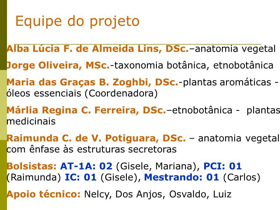 Alba Lúcia F. de Almeida Lins, DSc.–anatomia vegetal Jorge Oliveira, MSc.-taxonomia botânica, etnobotânica Maria das Graças B. Zoghbi, DSc.-plantas ar