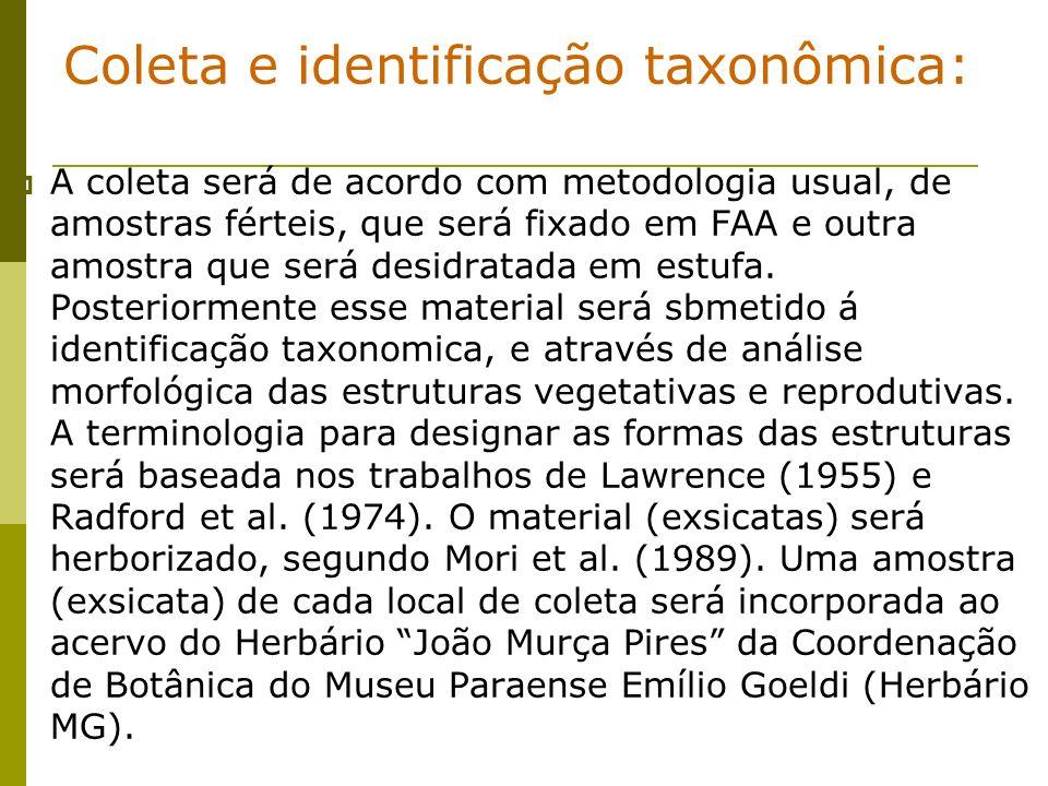Coleta e identificação taxonômica: A coleta será de acordo com metodologia usual, de amostras férteis, que será fixado em FAA e outra amostra que será