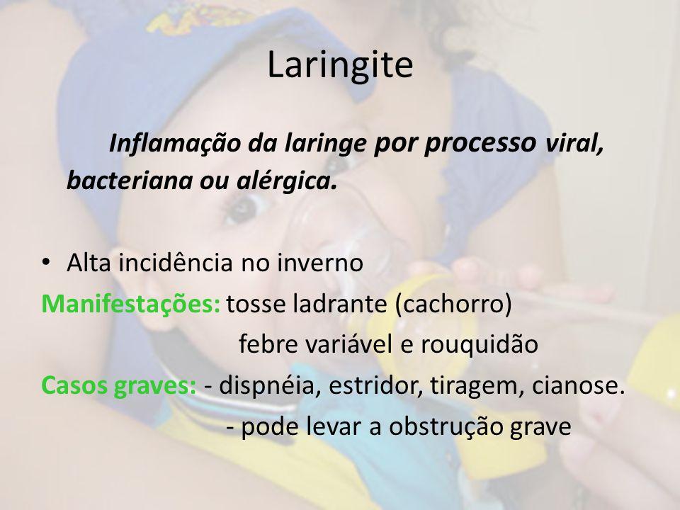 Laringite Inflamação da laringe por processo viral, bacteriana ou alérgica. Alta incidência no inverno Manifestações: tosse ladrante (cachorro) febre