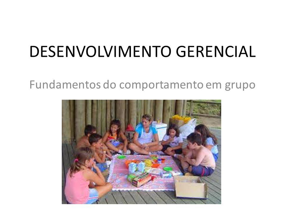 DESENVOLVIMENTO GERENCIAL Fundamentos do comportamento em grupo