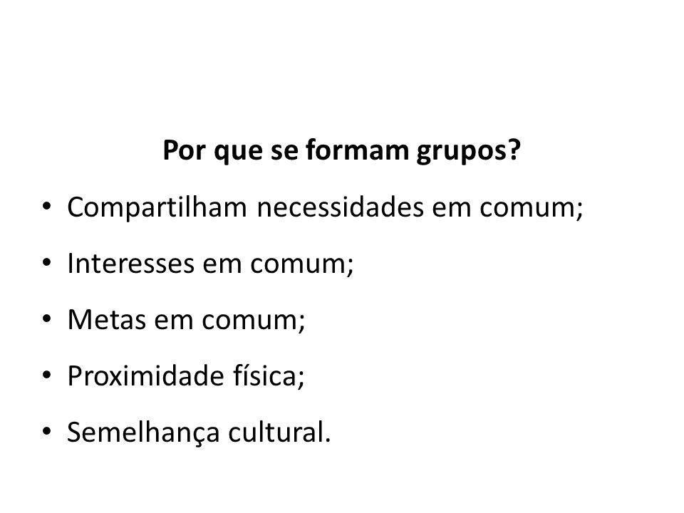 Por que se formam grupos? Compartilham necessidades em comum; Interesses em comum; Metas em comum; Proximidade física; Semelhança cultural.