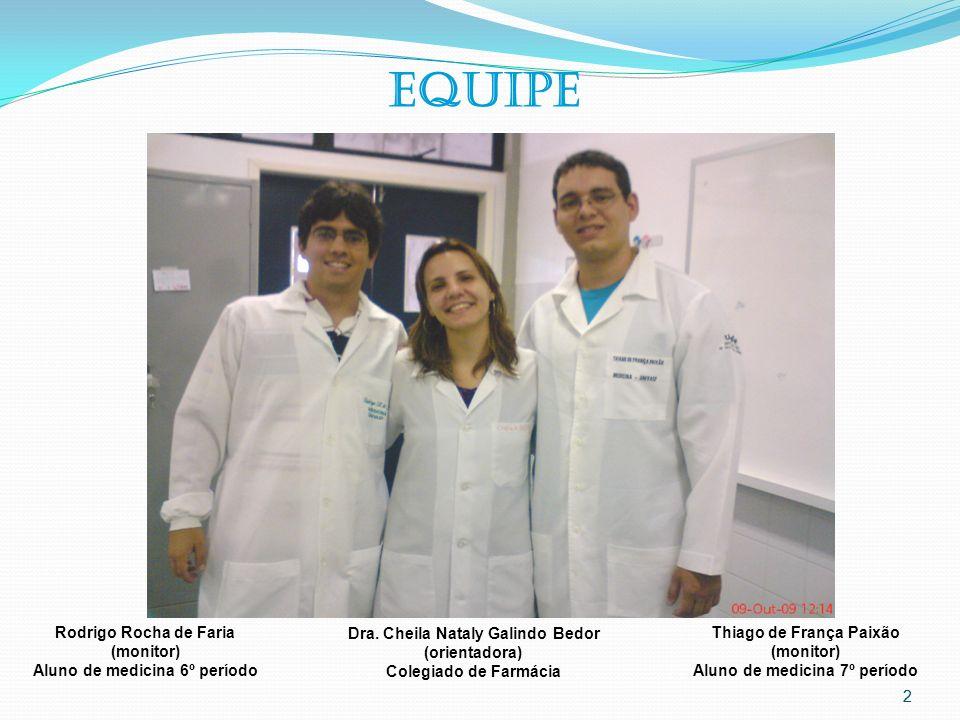 2 2 EQUIPE Dra. Cheila Nataly Galindo Bedor (orientadora) Colegiado de Farmácia Rodrigo Rocha de Faria (monitor) Aluno de medicina 6º período Thiago d