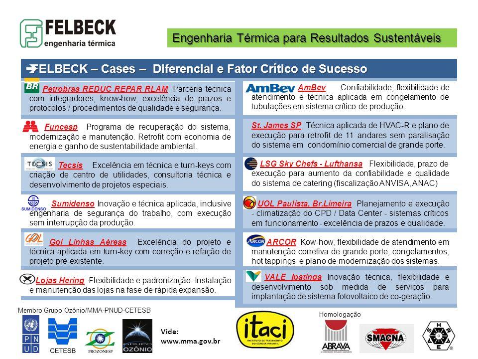 Engenharia Térmica para Resultados Sustentáveis Membro Grupo Ozônio/MMA-PNUD-CETESB Vide: www.mma.gov.br Homologação Petrobras REDUC REPAR RLAM Parcer