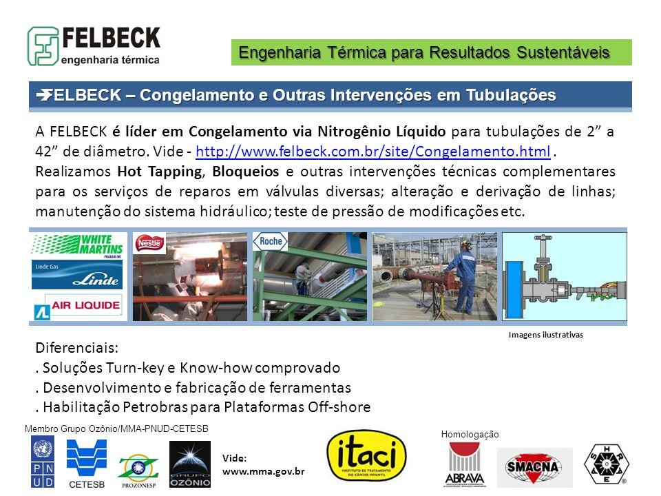 Engenharia Térmica para Resultados Sustentáveis Membro Grupo Ozônio/MMA-PNUD-CETESB Vide: www.mma.gov.br Homologação A FELBECK é líder em Congelamento