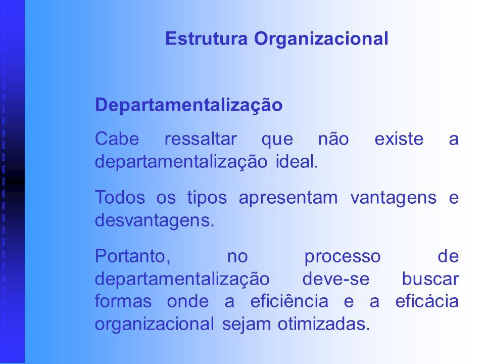 Estrutura Organizacional Departamentalização É o processo de agrupar atividades em frações organizacionais, definidas segundo um dado critério, com vi