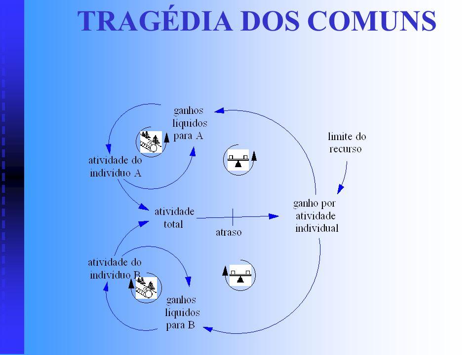 SUCESSO AOS BEM SUCEDIDOS