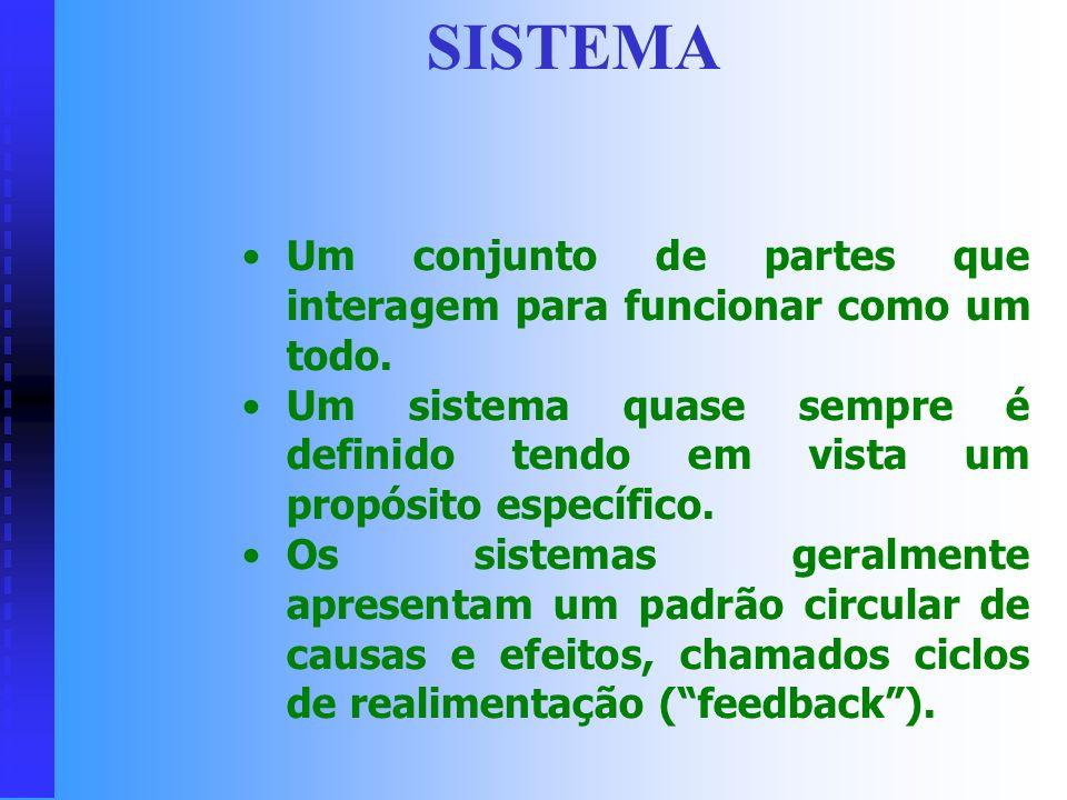 CONCEITOS BÁSICOS Sistema: Sistema: elementos, elementos, relacionamentos, relacionamentos, Ambiente: Ambiente: entradas, entradas, processos, process