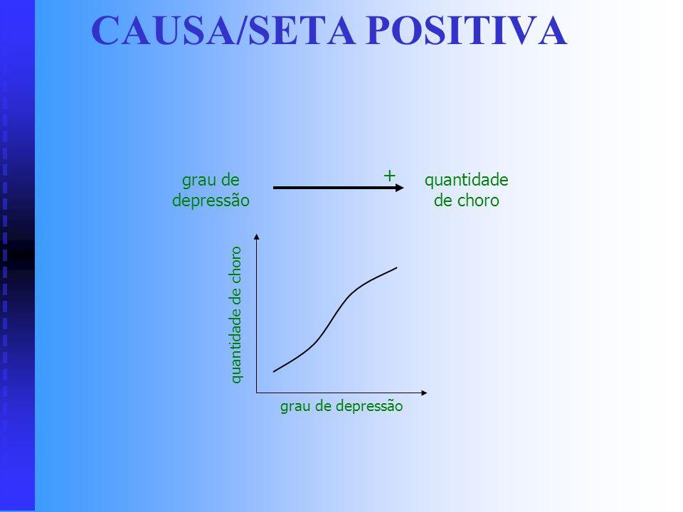 SIMBOLOGIA DOS CICLOS CAUSAIS Seta: relação causal – –Cauda: causa – –Cabeça: efeito Seta +: efeito varia no mesmo sentido da causa Seta -: efeito var
