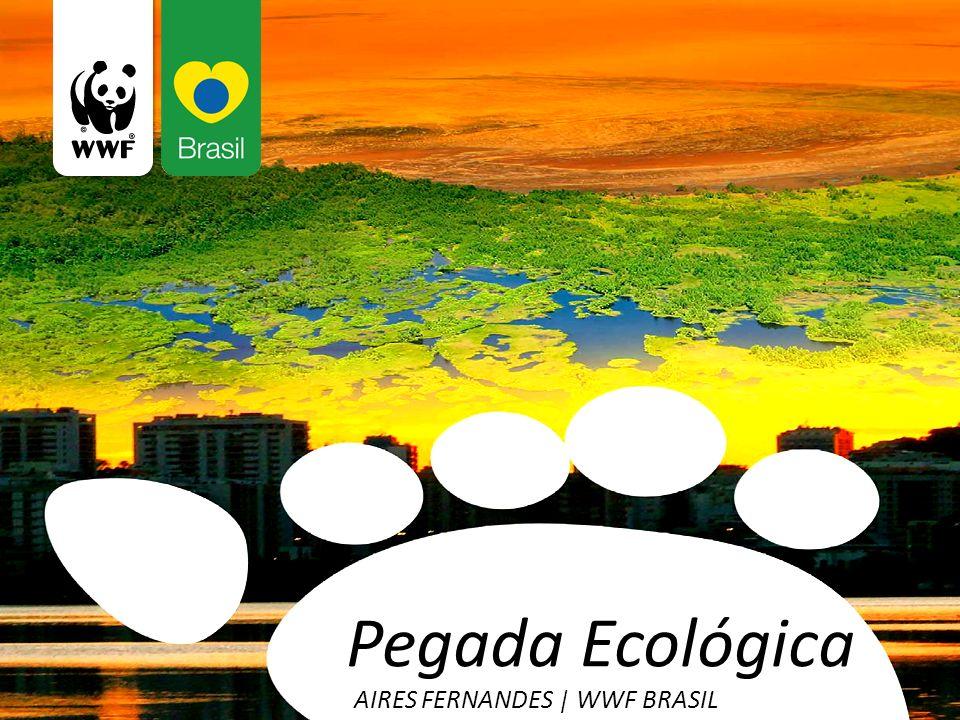 Pegada Ecológica AIRES FERNANDES | WWF BRASIL